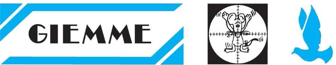 Logo Giemme